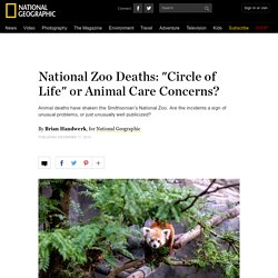 "National Zoo Deaths: ""Circle of Life"" or Animal Care Concerns?"