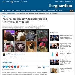 National emergency? Belgians respond to terror raids with cats