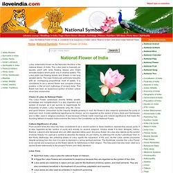 National Flower Of India, Indian National Flower, Indian Lotus, Indian National Symbols, National Symbols Of India.