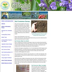 Soil Common Sense (National Gardening Association)