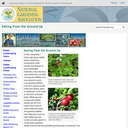 Eating from the Ground Up (National Gardening Association)