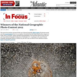 Winners of the National Geographic Photo Contest 2012 - In Focus