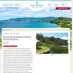 Grand Etang National Park & Forest Reserve