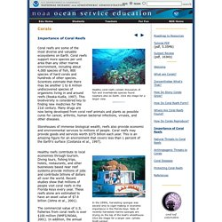 NOAA National Ocean Service Education: Corals