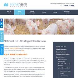 ANIMAL HEALTH AUSTRALIA - The National BJD Strategic Plan.