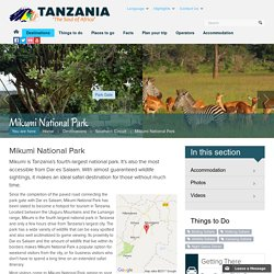 Mikumi National Park — Tanzania Tourism
