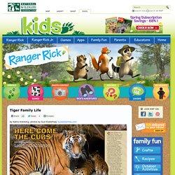 Tiger Family Life