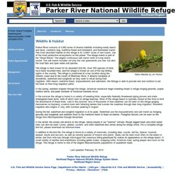 Parker River National Wildlife Refuge - Wildlife & Habitat