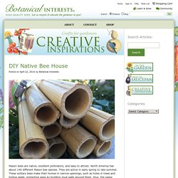 DIY Native Bee House - Botanical Interests Blog