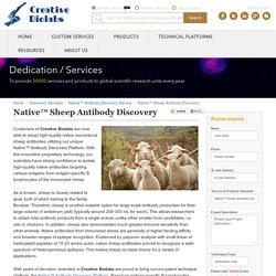 Native™ Sheep Antibody Discovery