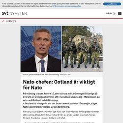 Nato-chefen: Gotland är viktigt för Nato