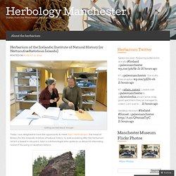 Herbarium of the Icelandic Institute of Natural History (or Náttúrufræðistofnun Íslands) « Herbology Manchester