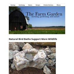 Natural Bird Baths Support More Wildlife