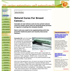 Natural Cures for Breast Cancer - Cannabis Oil Kills Cancer!