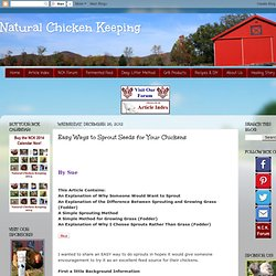 Easy Ways to Sprout Seeds for Your Chickens