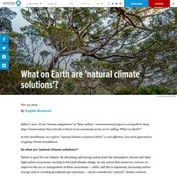 What on Earth are 'natural climate solutions'?