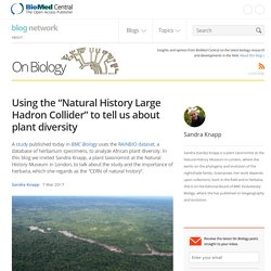 "Using the ""Natural History Large Hadron Collider"" to tell us about plant diversity"