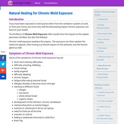 Hanna Kroeger Healer - Natural and Vibrational Healing