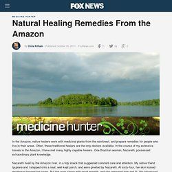 Natural Healing Remedies From The Amazon