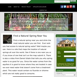 Find a Natural Spring Near You
