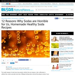 Natural News Blogs 12 Reasons Why Sodas are Horrible for You, Homemade Healthy Soda Recipes