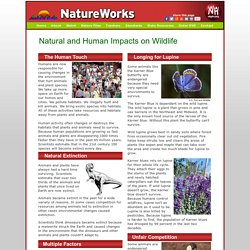 Natural and Human Impacts on Wildlife