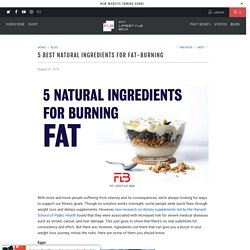 5 Best Natural Ingredients for Fat-Burning - Fit Lifestyle Box