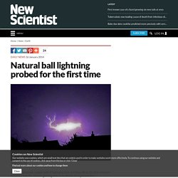 Natural ball lightning probed for the first time