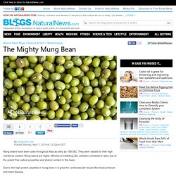 Natural News Blogs The Mighty Mung Bean