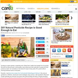 DIY Natural Pesticide Recipe is Good Enough to Eat