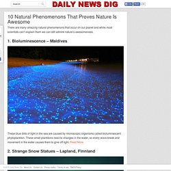10 Natural Phenomenons That Proves Nature Is Awesome