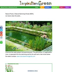 Natural Pools or Swimming Ponds - StumbleUpon
