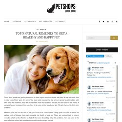 Top 5 Natural Remedies To Get A Healthy And Happy Pet