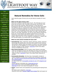 Natural Remedies for Horse Colic