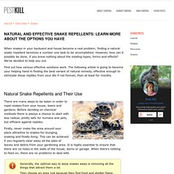 Natural Snake Repellent: Which One Works for You