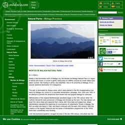 Montes de Malaga Natural Park, Flora and Fauna of Andalucía, Southern Spain