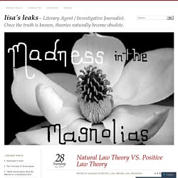 Natural Law Theory VS. Positive Law Theory