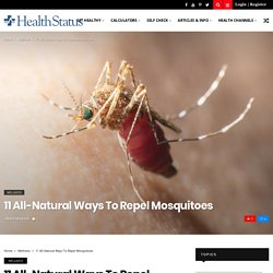 11 All-Natural Ways to Repel Mosquitoes