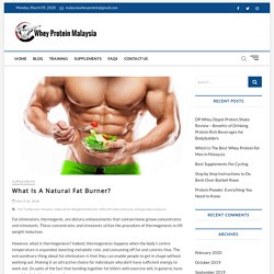 What Is A Natural Fat Burner? - WheyProteinMalaysia.com