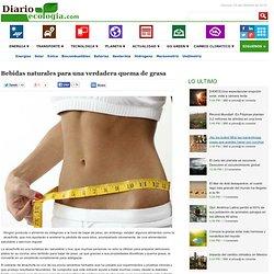 Bebidas naturales para una verdadera quema de grasa - Noticias de ecologia y medio ambiente