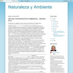Naturaleza y Ambiente: aRT.nRO.79-DIAGNOSTICO AMBIENTAL - MORON 2010