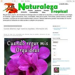Naturaleza Tropical: Cuando debemos regar nuestras orquídeas. Información útil.