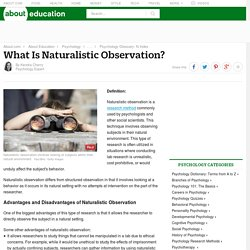 What Is Naturalistic Observation? (Definition & Examples)