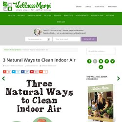 How to Naturally Clean Indoor Air