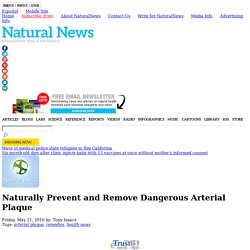 Naturally Prevent and Remove Dangerous Arterial Plaque