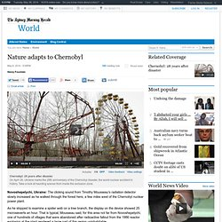 Nature adapts to Chernobyl