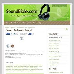 Nature Ambiance Sounds