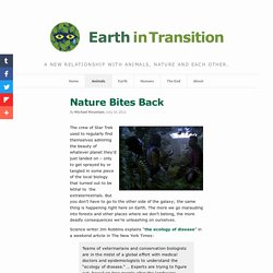 Nature Bites Back - Earth in Transition