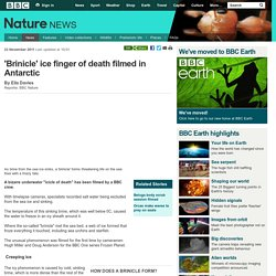 BBC Nature - 'Brinicle' ice finger of death filmed in Antarctic