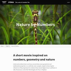 Nature by Numbers – ETÉREA